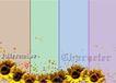 浪漫背景0226,浪漫背景,婚纱摄影,鲜花 向日葵