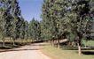 景观建筑与规划设计0274,景观建筑与规划设计,世界建筑,