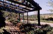景观建筑与规划设计0276,景观建筑与规划设计,世界建筑,