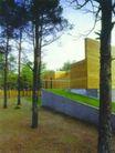 爱沙尼亚0013,爱沙尼亚,世界建筑设计,春意 树杆 绿叶