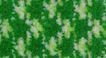 花毯0256,花毯,地毯,