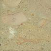米黄0053,米黄,石材,