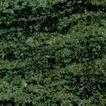 绿麻0004,绿麻,石材,