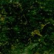 绿麻0005,绿麻,石材,