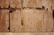 木材0018,木材,木材,