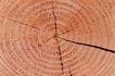 木材0030,木材,木材,