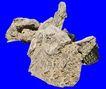 假山石头0124,假山石头,假山与喷水池,