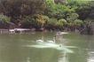 喷水池0038,喷水池,假山与喷水池,