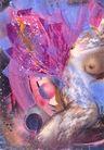 梦幻画0043,梦幻画,墙饰画,