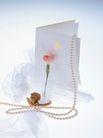珍珠0024,珍珠,物品摆饰,