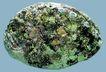 贝壳0034,贝壳,石头贝壳,