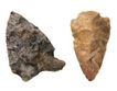 贝壳0074,贝壳,石头贝壳,