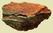 文化石0015,文化石,石头贝壳,