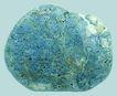 文化石0025,文化石,石头贝壳,
