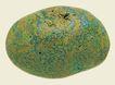文化石0028,文化石,石头贝壳,
