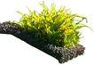 花草0931,花草,植物,