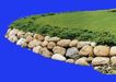 植皮草地0073,植皮草地,植物,