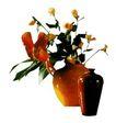 室内植物0142,室内植物,植物,