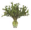 室内植物0154,室内植物,植物,