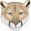 珍稀动物1020,珍稀动物,动物,
