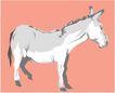 珍稀动物1036,珍稀动物,动物,