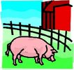 珍稀动物1038,珍稀动物,动物,