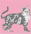 珍稀动物1043,珍稀动物,动物,