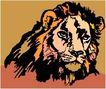珍稀动物1056,珍稀动物,动物,