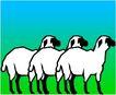 珍稀动物1064,珍稀动物,动物,