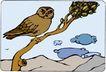 鸟的天堂0969,鸟的天堂,动物,