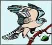 鸟的天堂0971,鸟的天堂,动物,