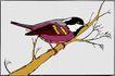 鸟的天堂0976,鸟的天堂,动物,