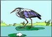 鸟的天堂0983,鸟的天堂,动物,