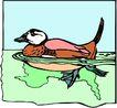 鸟的天堂0997,鸟的天堂,动物,