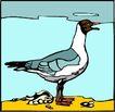 鸟的天堂1004,鸟的天堂,动物,