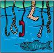 海底世界0463,海底世界,动物,