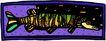 海底世界0475,海底世界,动物,