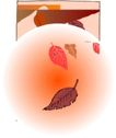 秋天0019,秋天,季节,落叶