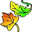 秋天0023,秋天,季节,树叶 植物叶片