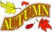 秋天0052,秋天,季节,树叶 文字 条幅