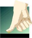 手0185,手,健康医疗,