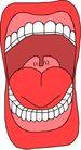 牙齿0031,牙齿,健康医疗,牙齿 舌头
