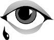 眼睛0050,眼睛,健康医疗,