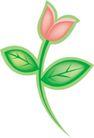 种植0284,种植,植物,