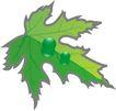 种植0315,种植,植物,