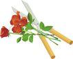 种植0322,种植,植物,