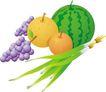 健康食品0194,健康食品,饮料食品,