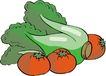 水果大全0126,水果大全,饮料食品,