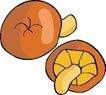 水果大全0142,水果大全,饮料食品,