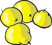 水果大全0162,水果大全,饮料食品,